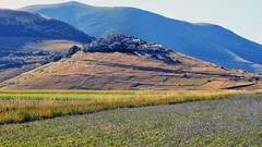 La martoriata Castelluccio (Luc1659) Tags: landscape castelluccio colori terremoto altipiano italy montisibillini appennini