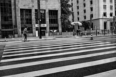 São Paulo, Brazil, 2015. (Luis Miguel Torres Manchola) Tags: candid everybodystreet featureshoot instagood instagram instaglobal instadaily igclubbnw igwbnw igstreet leica leicacamera leicaworld leicam240 leicam leicasummarit35 streetlife streetphoto streetphotographer streetplay saopaulo brazil