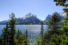 Grand Teton - Jenny Lake (Julian Price Jr.) Tags: grandteton jacksonhole
