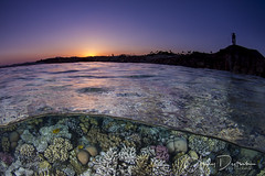 Sunset at the Lighthouse (andy_deitsch) Tags: alexmustardworkshop rasummsid redsea overunderunderoverunderoversplitsplitperspectiveha splitlevels overunderunderoverunderoversplitsplitperspectivehalfhalfhalfhalfabovebelowabovebelowunderwaterterrestrialunderwaterterresterialunderoveroverunder sunset reef