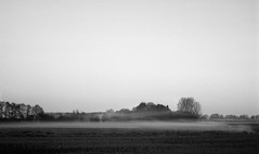 After the battle (Rosenthal Photography) Tags: wense asa400 nebel landschaft twiste anderlingen ilfordxp2 c41 35mm bw 20170502 olympus35rd analog ff135 dörfer siedlungen mist fog landscape morning bnw blackandwhite olympus 35rd ilford xp2 epson v800