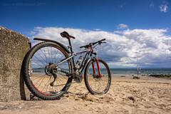 Sky Blue (ianrwmccracken) Tags: 29er blue beach largo sky sand cloud carve bike specialized sony a6000 bicycle fife riverforth