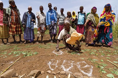 Pastoralist community from Fentale, Ethiopia mapping rangelands and rangeland resources