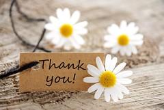Thank u (Chinastar2013) Tags: thank you thx greetings