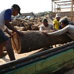 Loading logs thumbnail