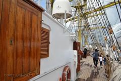 El Velero Rumano Mircea es un velero del tipo barca de tres mástile  (64) (javier_cx9aaw) Tags: elero rumano mircea