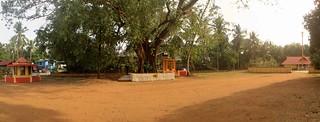 Sree Bala Subramanya Swamy Temple or Sree Narayana Guru Temple, Ponganamkadu 2
