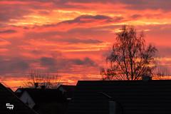 fading red (madtacker) Tags: wolken himmel sonne sonnenuntergang stadt deutschland baum haus orange rot clouds sky panasonic lumix fz1000