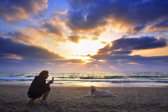 """Look at me !"" (Roi.C) Tags: sun sunset clouds sea seascape landscape dog people outdoor season winter spring beach waves water weather israel telaviv mediterraneansea sit sitting seated"