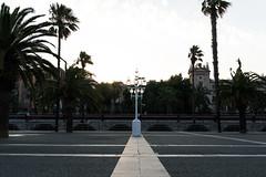 DSC05228 (arden.demirci) Tags: barcelona ispanya spain katalonya cataluña catalunya catalonha barselona picture sony travel traveler photographer photo love holiday madrid day light people new city summer