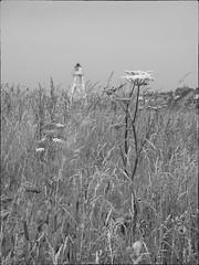 Lighthouse at Silloth (Barbara Fallas) Tags: cumbriancoast silloth lighthouse