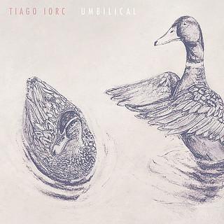 Tiago Iorc - Ducks in a Pond (Álbum Umbilical) [Áudio Oficial]
