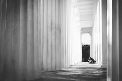 space (_gate_) Tags: volksgarten wien vienna austria österreich street photography u2 metro station architecture ubahn architektur photo art urban style city high contrast kontrast wean u4 nikon d750 afs 1835mm ed strase 2017 symmetrie sigma 24mm 14 ring parlament rathaus hall hofburg burg