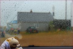 A rainy day in Dungeness (Finding Chris) Tags: dungeness beach wrecks shipwrecks flotsam jestsom rain wind steyningcameraclub photoshoot inside car windscreen monkey pipe chrisbarbaraarps canon60d