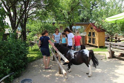 Pony spielen