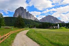 Monte Pana (luca2142) Tags: italy italia alpi alps dolomites dolomiti trentinoaltoadige sudtirol montepana selvadivalgardena scristinavalgardena sassolungo sassopiatto