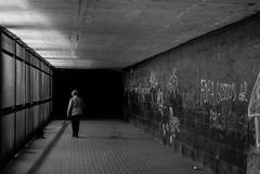 Dona i gos / Woman and dog (JordiTrenzano) Tags: barcelona street streetphotography streetshot streetscene urban city black white blackandwhite blanco y negro blancoynegro blanc negre sant antoni