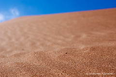 #arena #sand #granos #grains #cielo #sky #cieloazul #bluesky #2016 #calblanque #murcia #españa #spain #mar #sea #mediterráneo #naturaleza #nature #paisaje #landscape #macro #photography #photographer #sonyimages #sonystas #sonyalpha #sonyalpha350 #sonya35 (Manuela Aguadero) Tags: landscape mar españa sonystas 2016 granos bluesky sonya350 sonyimages nature grains spain sand sea cieloazul photography murcia sky mediterráneo arena sonyalpha sonyalpha350 macro cielo paisaje photographer alpha350 naturaleza calblanque