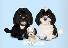 910007 (Osoq.com) Tags: wwwosoqcom pet animal caricature
