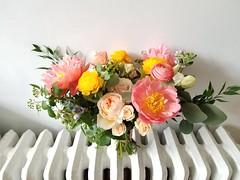 20170520_171601 (Flower 597) Tags: weddingflowers weddingflorist centerpiece weddingbouquet flower597 bridalbouquet weddingceremony floralcrown ceremonyarch boutonniere corsage torontoweddingflorist