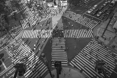 PLUS SIGN (ajpscs) Tags: ajpscs japan nippon 日本 japanese 東京 tokyo city people ニコン nikon d750 tokyostreetphotography streetphotography street 2017 shitamachi monochromatic grayscale monokuro blackwhite blkwht bw blancoynegro strangers ginza blackandwhite monochrome urban othersideoftokyo walksoflife 白&黒 kosaten ginzakosaten intersection scramblecrossing スクランブル交差点 streetoftokyo thisisjapan plussign
