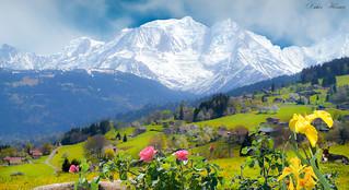 Le Seigneur des Alpes