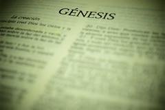 El Génesis (Mario Adalid) Tags: religion religiones biblia genesis