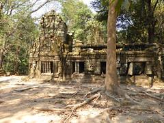 Cambodia - Ta Prohm (Bogdan J.S.) Tags: azja asia kambodża cambodia taprohm świątynia temple ruiny remains dziedzictwo heritage sztuka art kultura culture