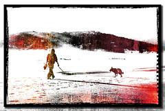 fotogramma onirico (Stefano D'Acunto) Tags: mare sea cane dog spiaggia beach shore costa ombre scauri minturno