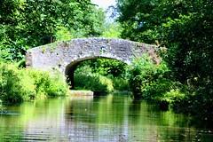 Llanover (Dickie-Dai-Do) Tags: explore llanover abergavenny canal mbc bridge85 thimblesbridgeno85 monmouthshirebreconcanal