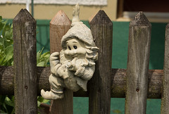 Inzell 2017 (Günter Hentschel) Tags: inzell ts chiemgau bayern garten garden nikon nikond5500 d5500 hentschel flickr outdoor deutschland germany germania alemania allemagne europa zwerg gnom