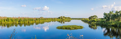 Prairie Canalorama (hetrickwesley) Tags: 80d canon80d dlsr florida floridastateparks gainesville lachuatrail nature outdoors park paynesprairie wildlife unitedstates us panorama canal tamronlens 1750divc tamron
