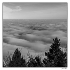Brume hivernale (Francis =Photography=) Tags: europa europe france alsace grandest montsainteodile nuages clouds bw plainealsacienne noirblanc brume hivers