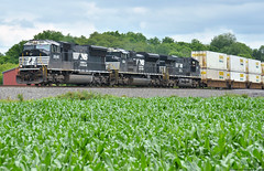 That season (Arkangel Productions) Tags: norfolk southern ns tier line 37t sd70m