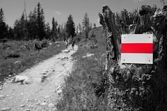 DSCF6091 (Miroslav Pivovarsky) Tags: vysoke tatry slovak slovakia natur nature outdoor fujifilm x70 mountains hiking hikings strbske pleso tarn sun day sunday
