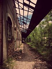 Estación de Canfranc (Mariví13) Tags: pirineos tren españa fantasma spain huesca aragón abandonada canfranc estación