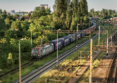From the overpass (K_R_R_2) Tags: sony a6000 nex selp18105g poznan poznań franowo train tracks tiltshift overpass