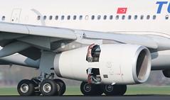 Turkish Airlines Airbus A330-300 (AMSfreak17) Tags: amsfreak17 danny de soet canon 70d ams eham amsterdam luchthaven schiphol airport vliegtuigen vliegtuig aircraft airplane jet jetphotos planespotting luchtvaart vertrek aankomst departure arrival spotter planes world of airplanes nederland the netherlands holland europe dutch approach landing runway 18r 36l polderbaan tcjno turkish airlines airbus a330300 a330