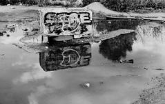 Graffiti Pier_006_01 (mujetdebois) Tags: halideproject canonelan100 35mm ilfordfp4plus400 graffitipier blackandwhite analogphotography biancoenero blackandwhitephotography filmisnotdead filmlives graffiti filmphotography monochrome negroyblanco noirblanc schwarzundweis streetart streetportrait черноеибелое