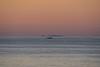 DSC_2248_007 (Giovanni Valentino) Tags: italy sicily palermo bagheria aspra ustica tramonto sunset nikon d750 200500