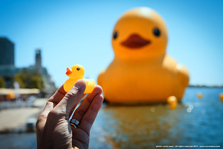 giant small rubber duck