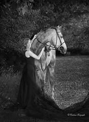Elegance (Cristina Laugero) Tags: elegance horse lady black white bn