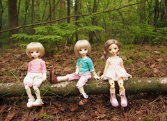 3 little May's (Tales of Karen) Tags: bluefairy shiny fairy may bjd balljointed doll 1st 2nd 3rd