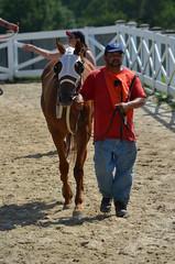 2016-07-10 (48) r5 #7 Morning Vow (JLeeFleenor) Tags: photos photography maryland md marylandhorseracing laurelpark horseracing horses thoroughbreds equine equestrian cheval cavalo cavallo cavall caballo pferd paard perd hevonen hest hestur cal kon konj beygir capall ceffyl cuddy yarraman faras alogo soos kuda uma pfeerd koin حصان кон 马 häst άλογο סוס घोड़ा 馬 koń лошадь