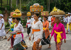 A traditional hindu temple festival procession in Tirta Empul temple, Bali island, Tampaksiring, Indonesia (Eric Lafforgue) Tags: adultsonly asia asian bali bali1891 balinese baskets carry carrying celebration ceremony clothing colorful culture day event festival festivity flowers fruits gifts groupofpeople hindu hinduism horizontal indonesia indonesian offerings outdoors parade parasol pilgrimage procession religion religious ritualofferings sacred spiritual spirituality tampaksiring tirtaempul tradition traditional umbrella walking women baliisland