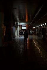 Jazz and umbrella (小川 Ogawasan) Tags: japan japon station neon urban kanagawaken odawara shinkansen
