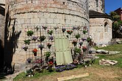 Temps de flors_0014 (Joanbrebo) Tags: girona catalunya españa es tempsdeflors tempsdeflors2017 canoneos80d eosd autofocus cityscape efs1018mmf4556isstm