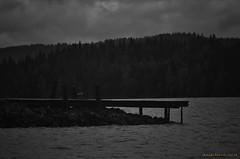 Dark water (MIKAEL82KARLSSON) Tags: pir brygga norrahörken dark natur naturbild nature panasonic lumix fz300 mikael82karlsson