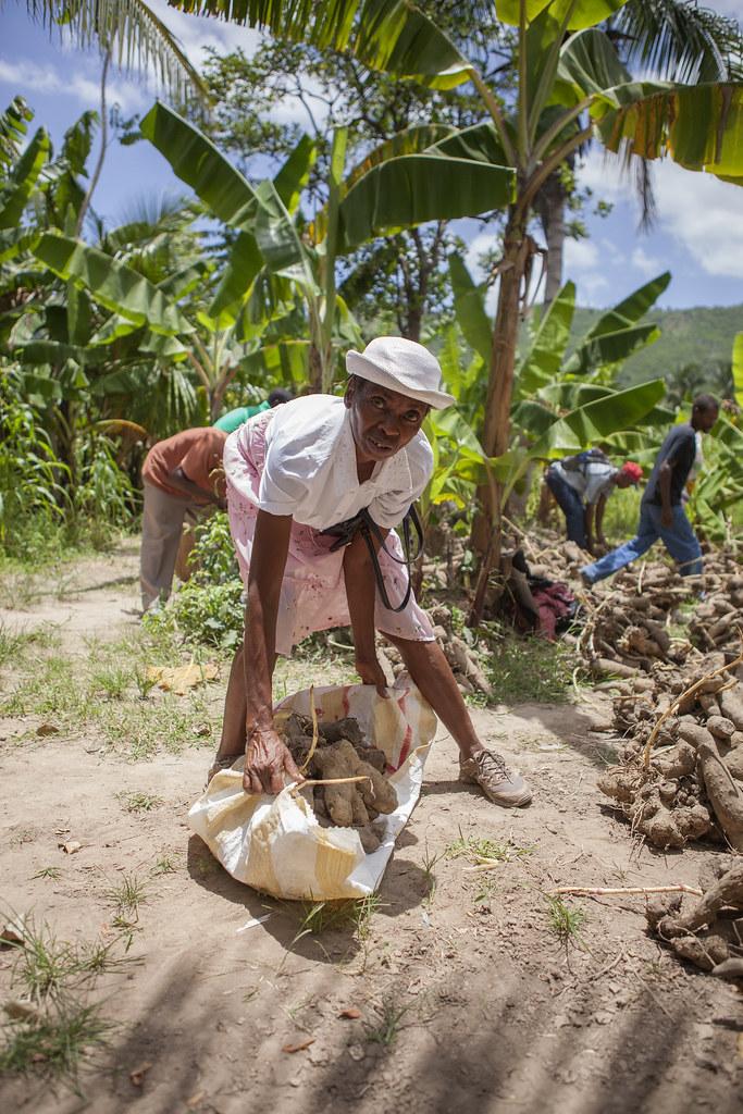 AVSF-HAITI-2017-TRISTANPARRY195