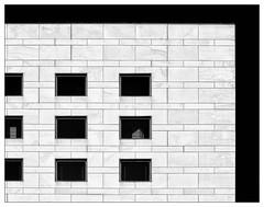 Rechtecke – rectangular (frodul) Tags: dz bank fassade gebäude architektur himmel ausenansicht detail fenster gebäudekomplex gestaltung linie outdoor verwaltungsgebäude bw einfarbig monochrom sw hannover ni deutschland